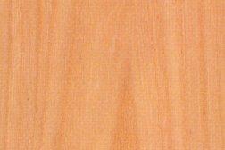 English Elm Timber